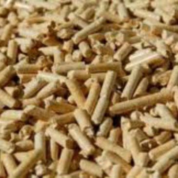 Biomasa Térmica
