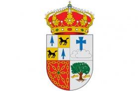 Ayto. Vera Bidasoa-Logo