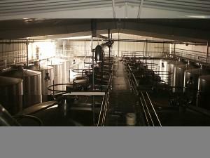 Domecq Wines España-Foto2