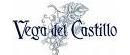 logo_vegacastillo