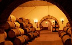 vinicolanavarra